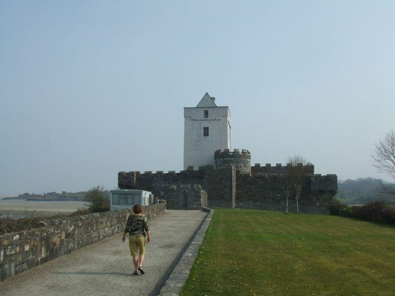 1507 in Ireland